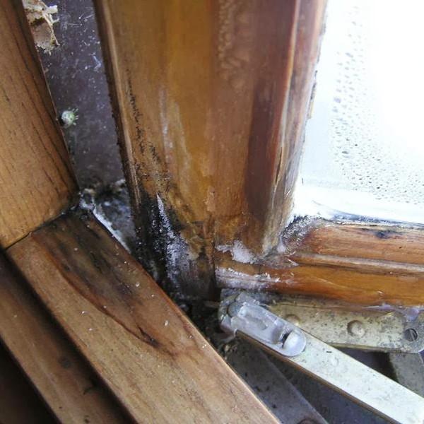 Проблемы с деревянными окнами